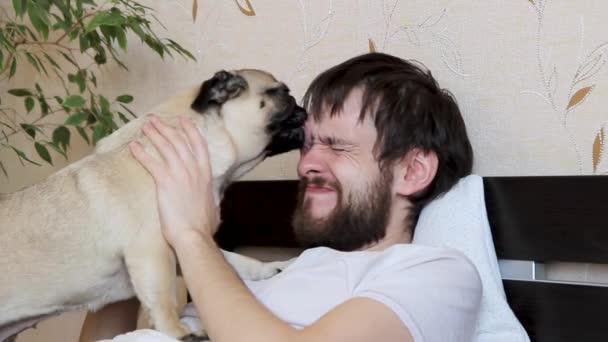 Aranyos kutya puszi és nyalogatja a gazdája arcát nyelvvel. vegye kutya nyálát az arcáról
