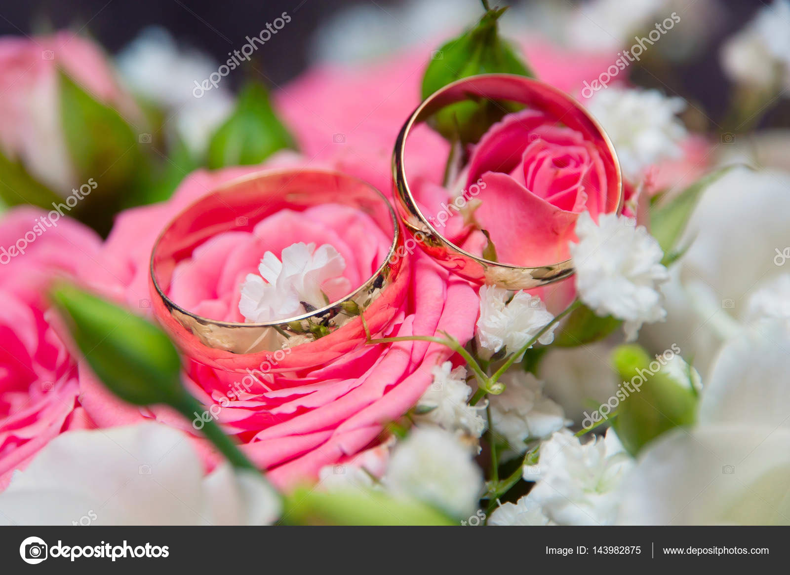 Two wedding rings and pink and white roses — Stock Photo ...