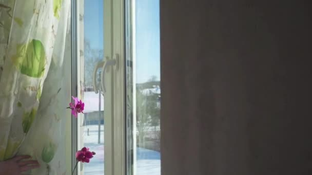 Žena se otevírá okno a dýchat čerstvý studený vzduch do zasněžených hor, zpomalené hd video