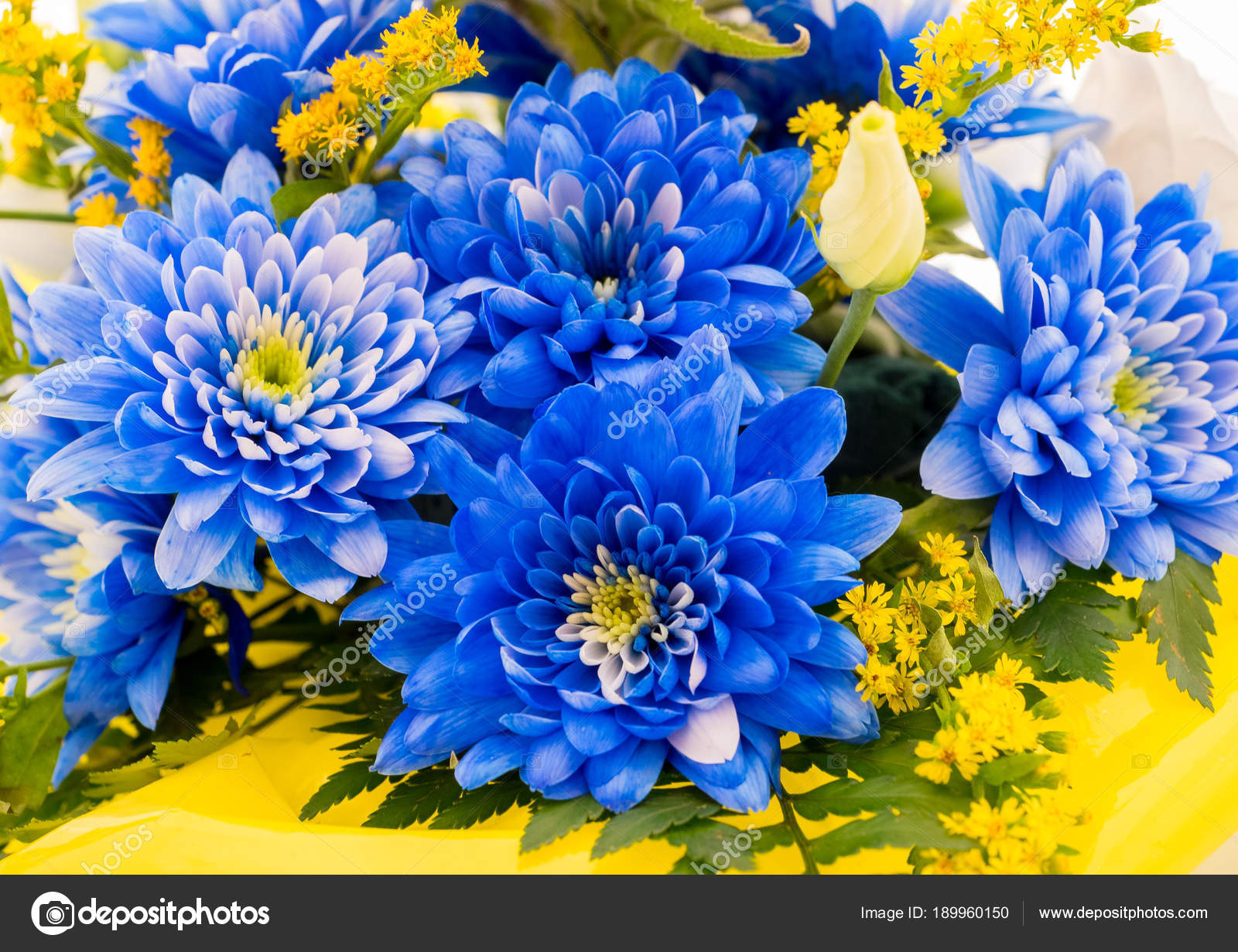 Bouquet Fiori Gialli.Images Blue And Yellow Flower Blue And Yellow Flowers Bouquet