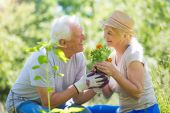 starší pár zahradnictví