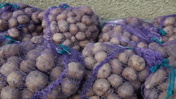 brambory v síťovaných sáčcích připravené k setí detailů