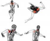 3D vykreslování lékařské ilustrace lopatky kosti