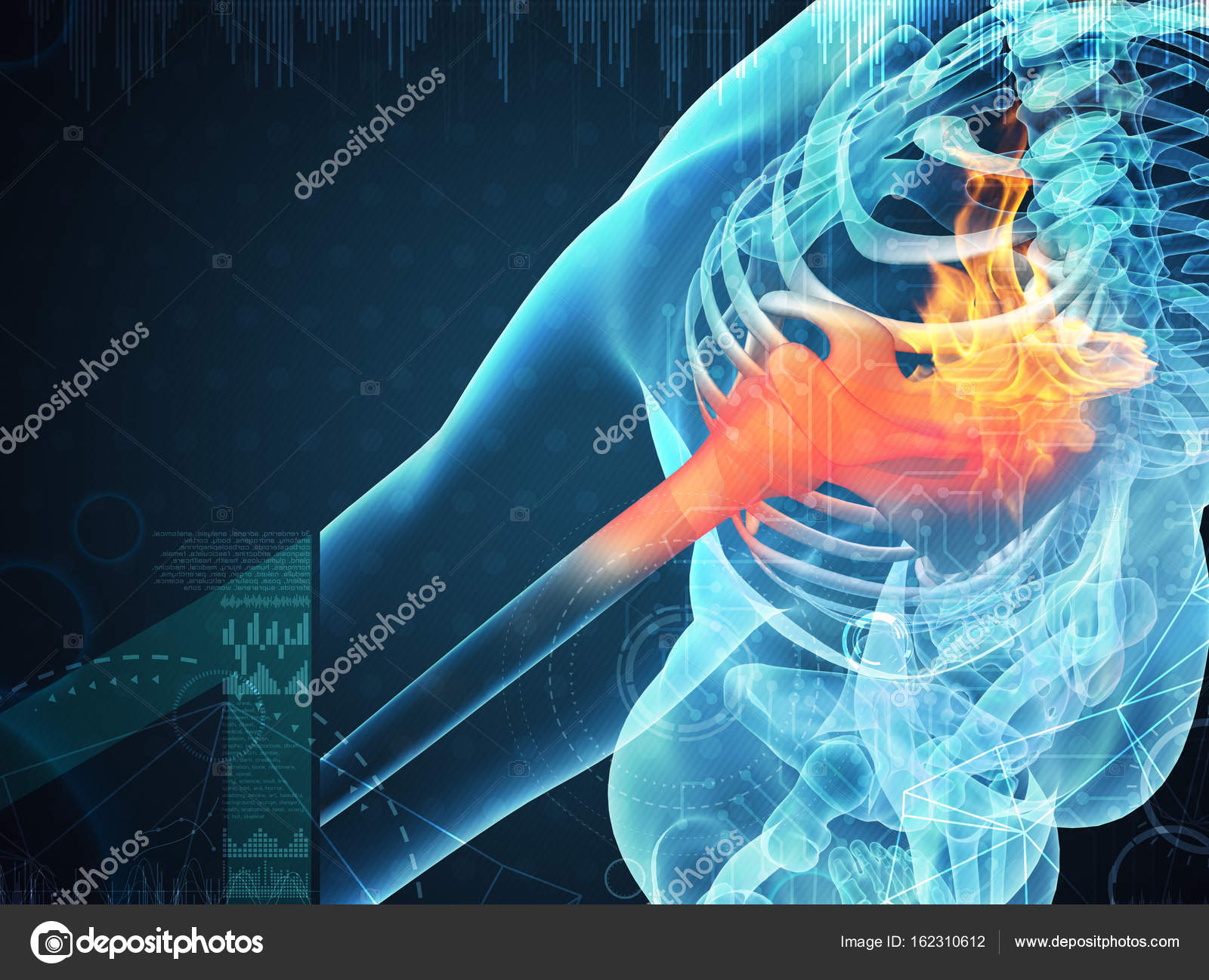 3d Rendering Human Shoulder Pain With The Anatomy Of A Skeleton