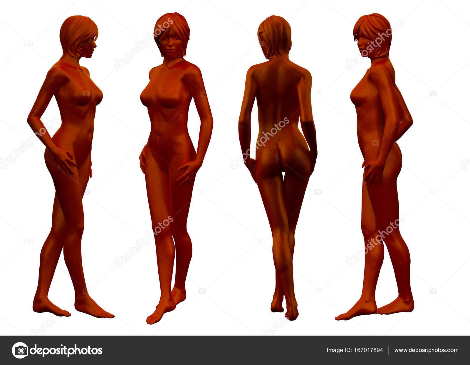 3D Rendering medizinische Illustration der weiblichen Anatomie ...