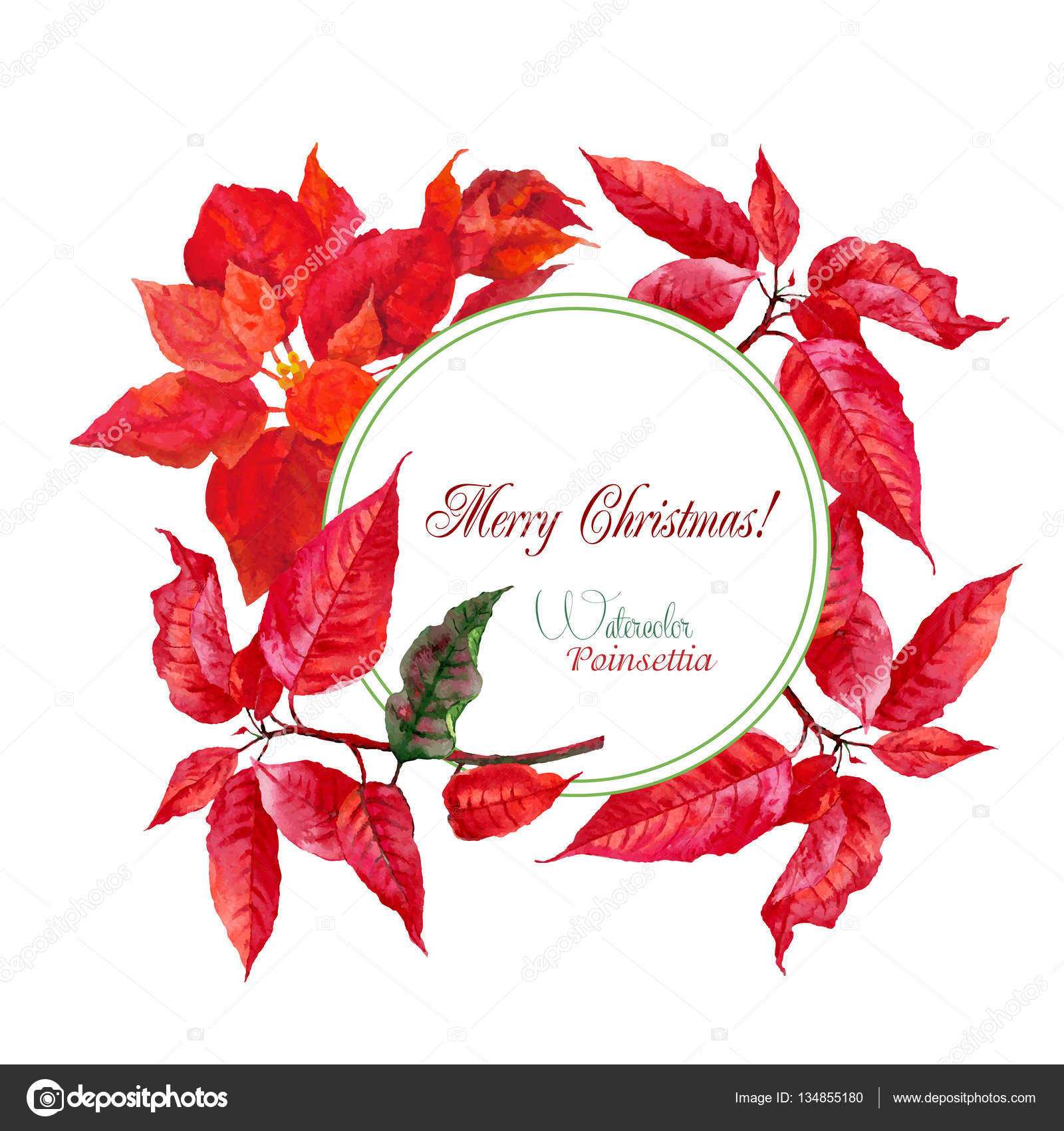 Hintergrund mit Bouquet von Weihnachtsstern — Stockvektor ...
