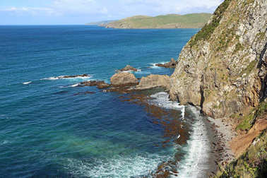 Roaring Bay   -   New Zealand