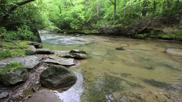 Laurel Fork - West Virginia