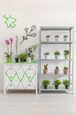 White commode and rack with plants
