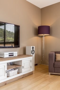 Tv living room idea