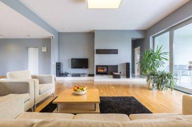 Spacious room with big plasma television
