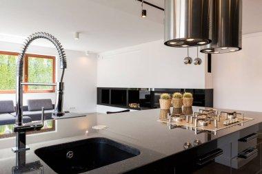 Kitchen interior with sink
