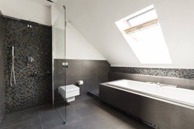 Bathroom in the attic