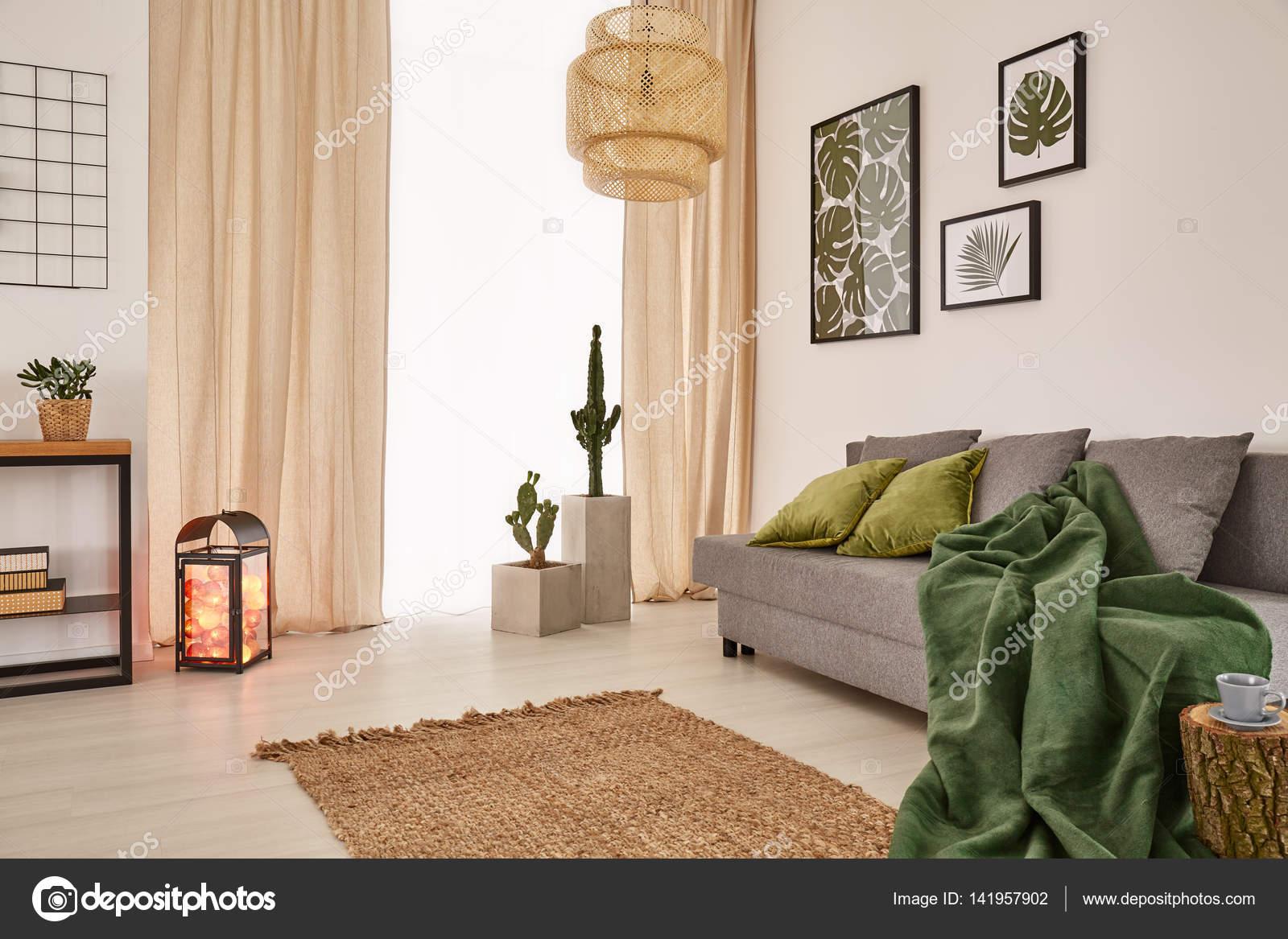 Zimmer Mit Decke Auf Couch Stockfoto C Photographee Eu 141957902