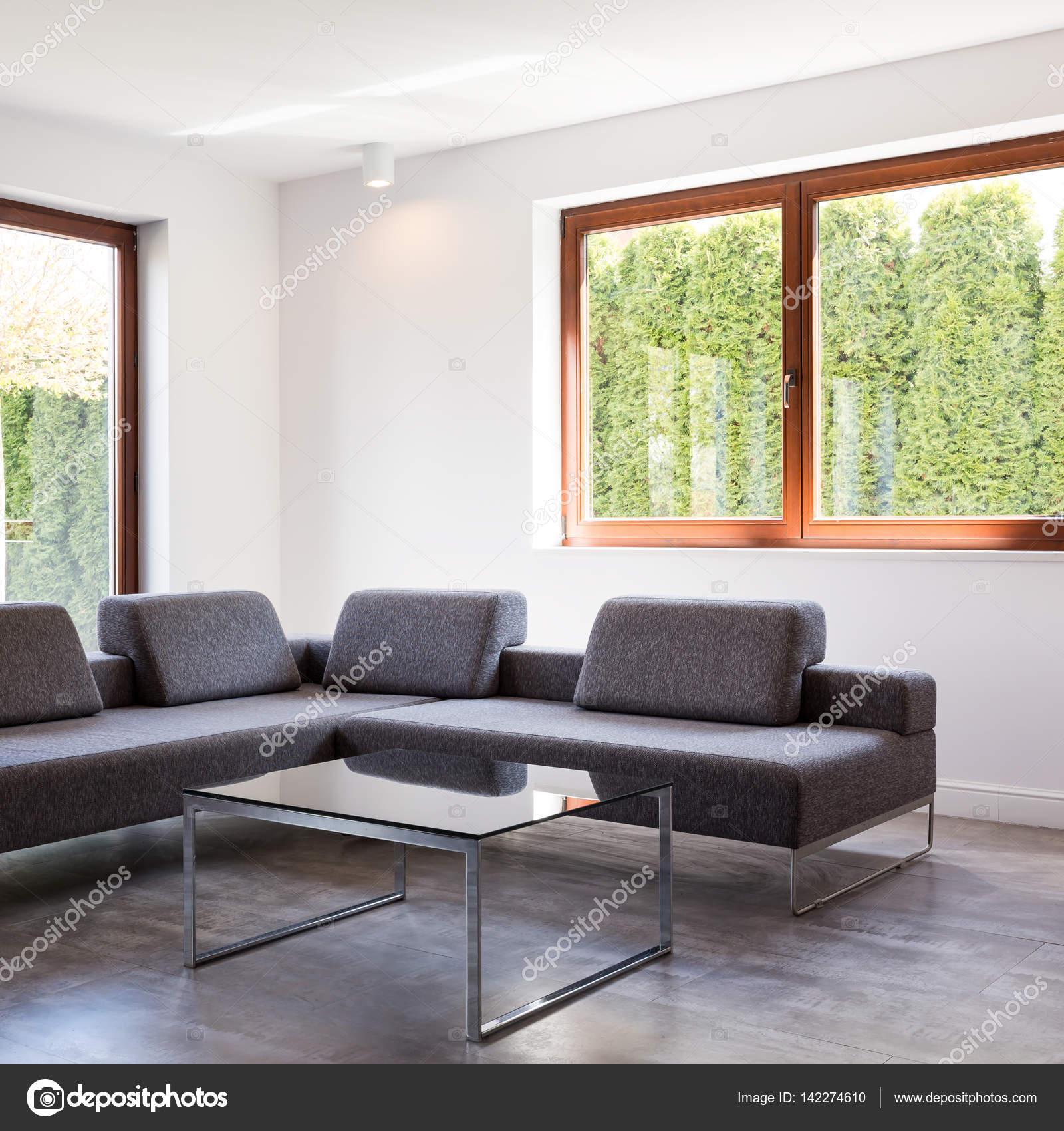 woonkamer met grijze bank — Stockfoto © photographee.eu #142274610