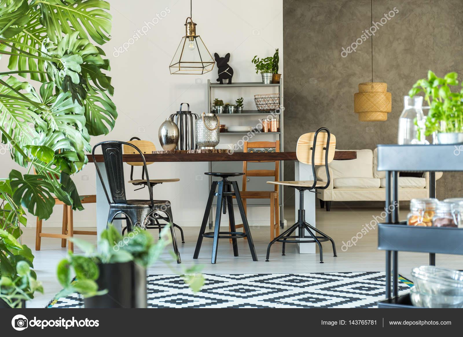 Moderne Esszimmer Mit Monstera U2014 Stockfoto