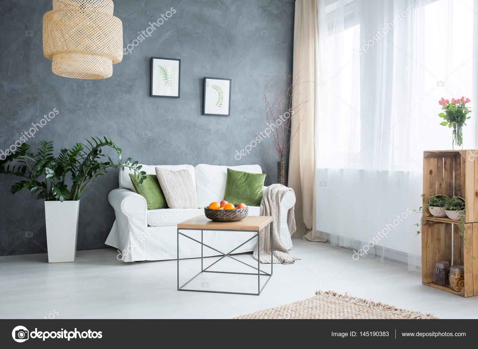 Grigio soggiorno con divano — Foto Stock © photographee.eu #145190383