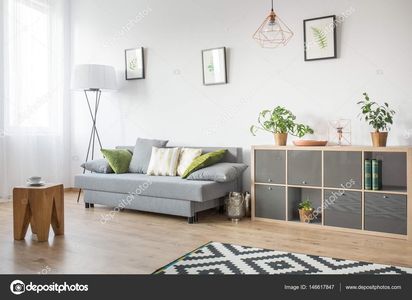 salon avec canap gris photo