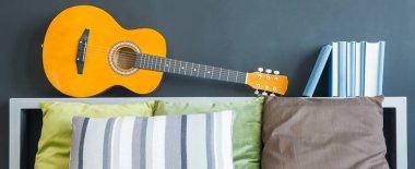 Guitar lying on shelf