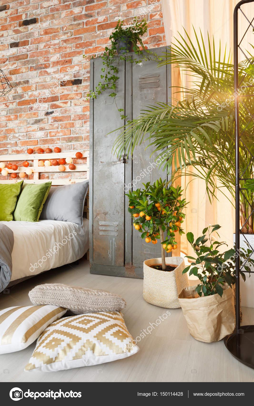 Armadietto e piante in camera da letto — Foto Stock © photographee ...