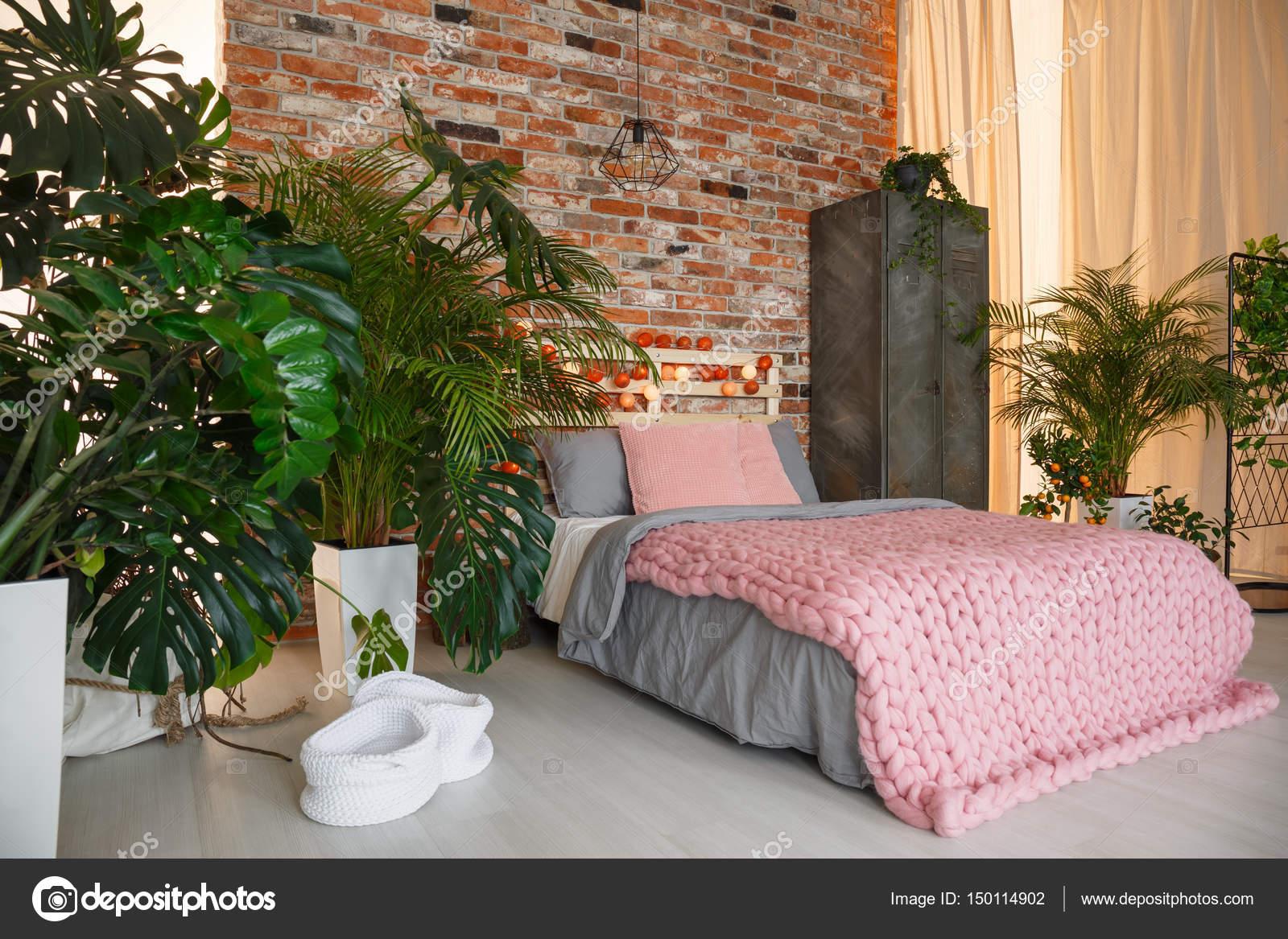 Planten in slaapkamer — Stockfoto © photographee.eu #150114902