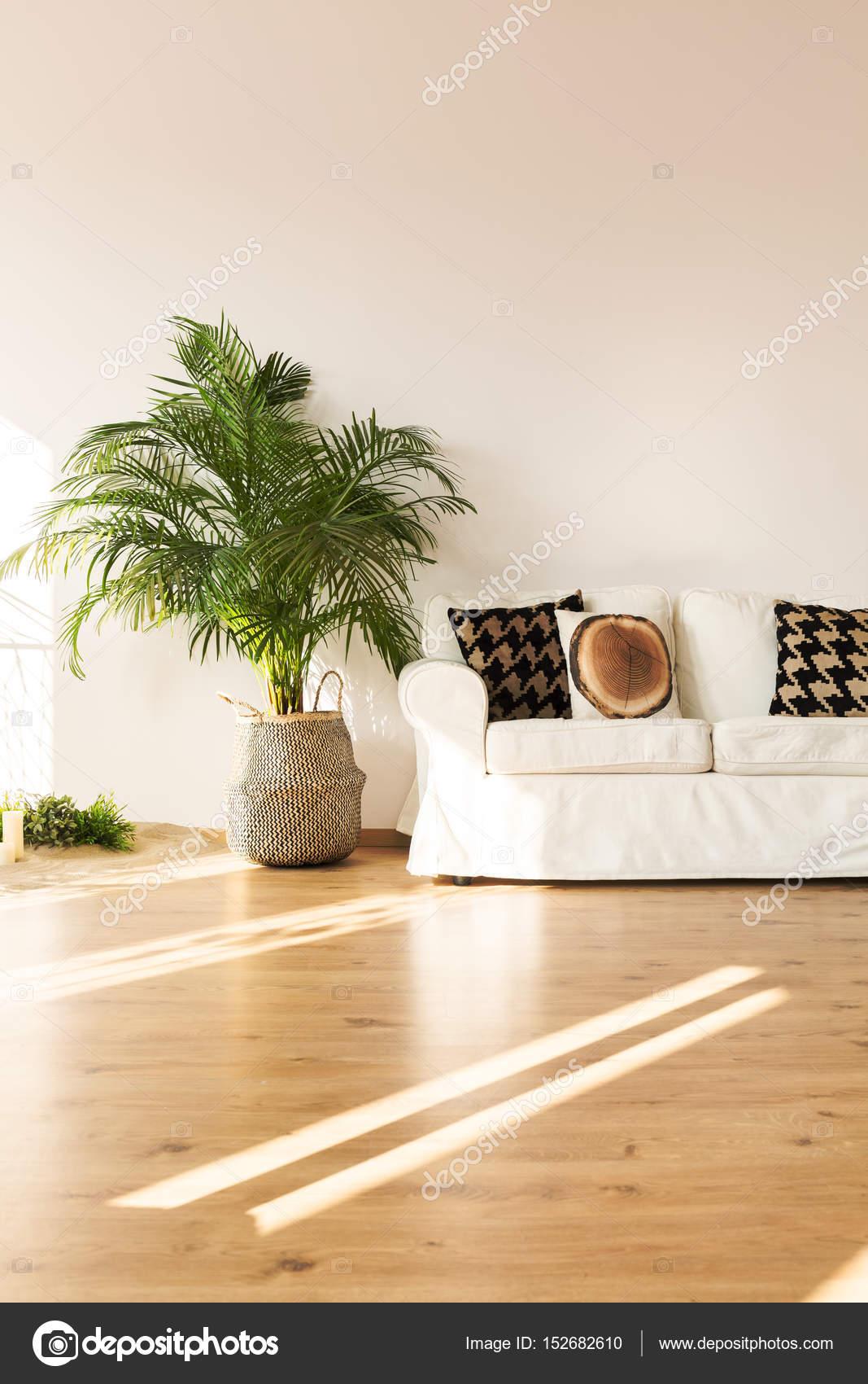 Einfache Wohnzimmer mit sofa — Stockfoto © photographee.eu #152682610