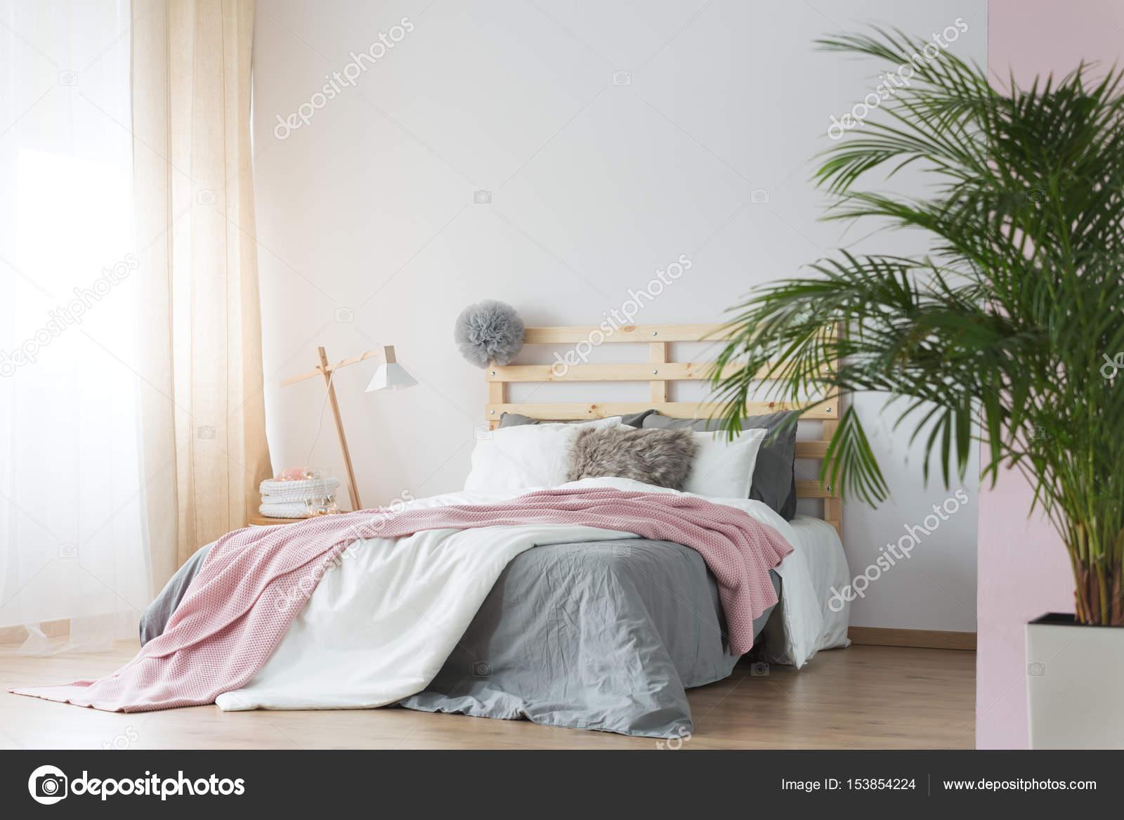Pflanzen im Schlafzimmer — Stockfoto © photographee.eu #153854224