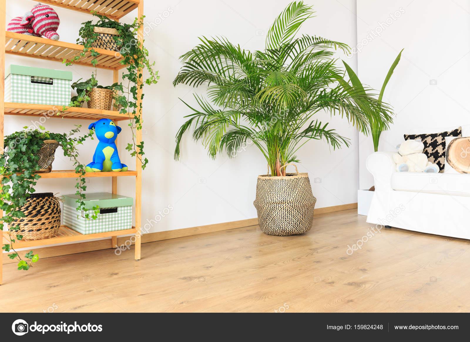 Woonkamer met planten — Stockfoto © photographee.eu #159824248