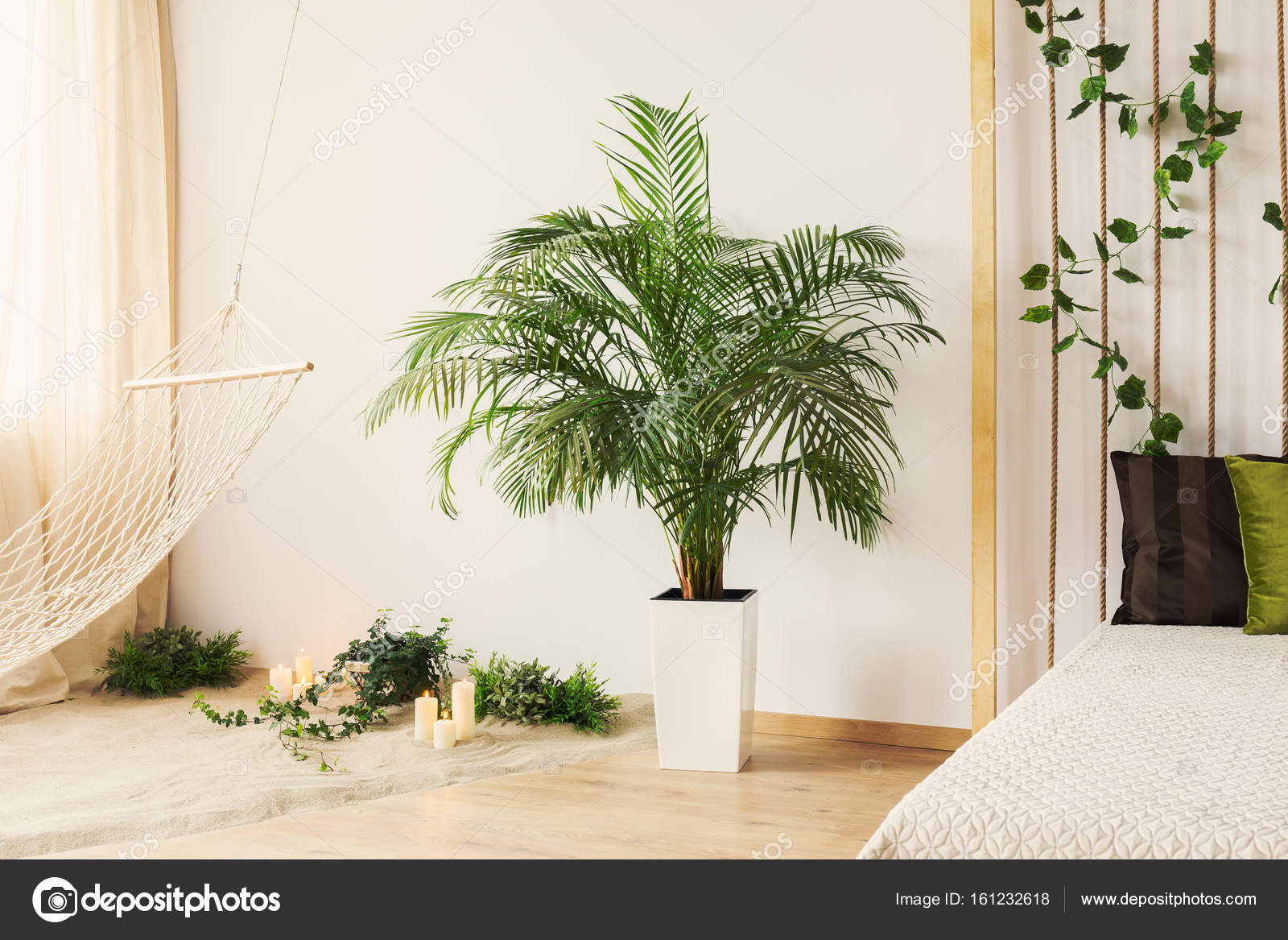 plant in slaapkamer stockfoto