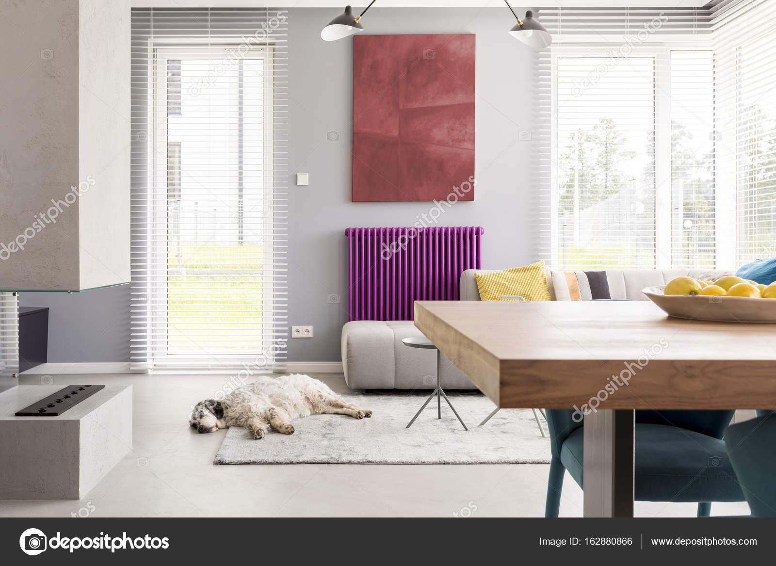 Hell Beige Couch, Tisch, Kamin, Kunstwerk, Helle Fenster Und Lila Akzent Im  Modernen Wohnzimmer Mit Hund Schlafen Auf Dem Teppich U2014 Foto Von  Photographee.eu