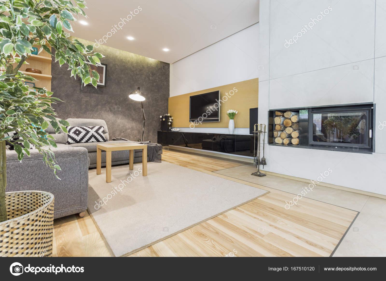 Salon moderne avec foyer photographie for Salon tchat