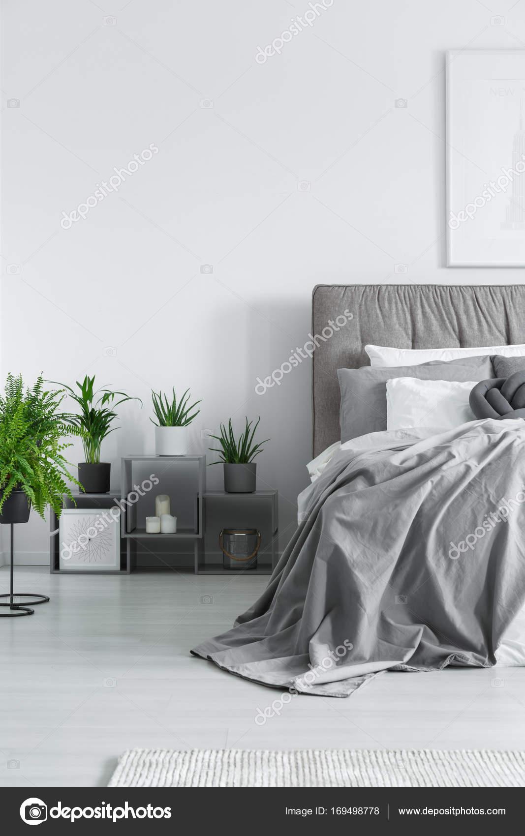 talrijke planten in slaapkamer stockfoto