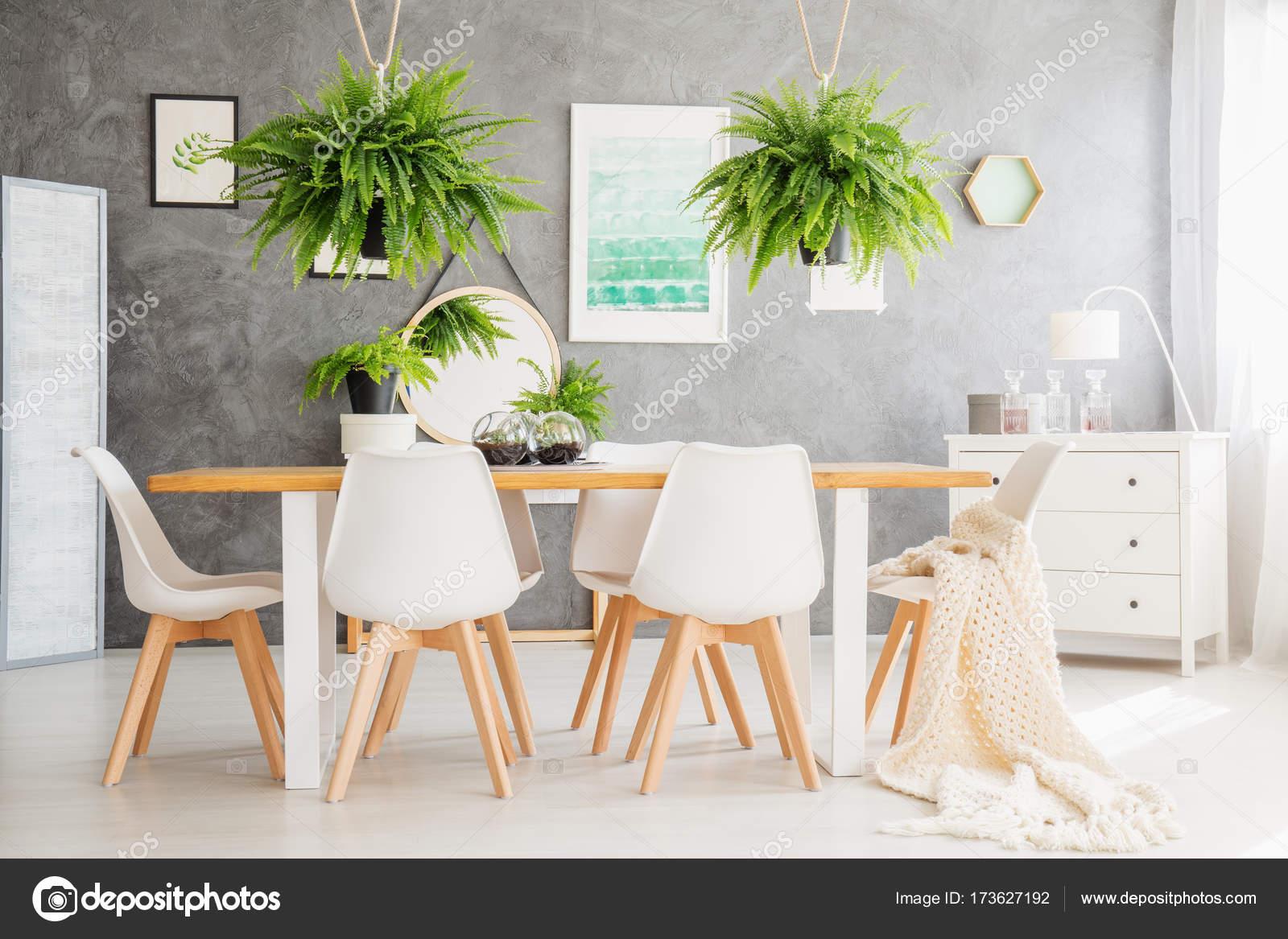 Wunderbar Weisse Stühle Das Beste Von Farne über Tisch Und Weiße Stühle Im