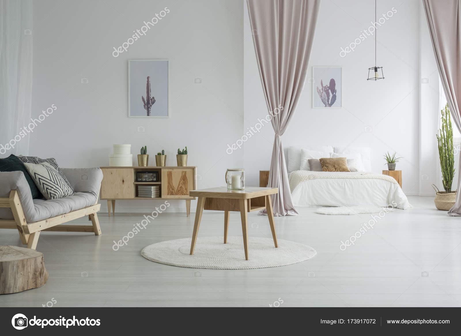 Ruime woonkamer met slaapkamer — Stockfoto © photographee.eu #173917072