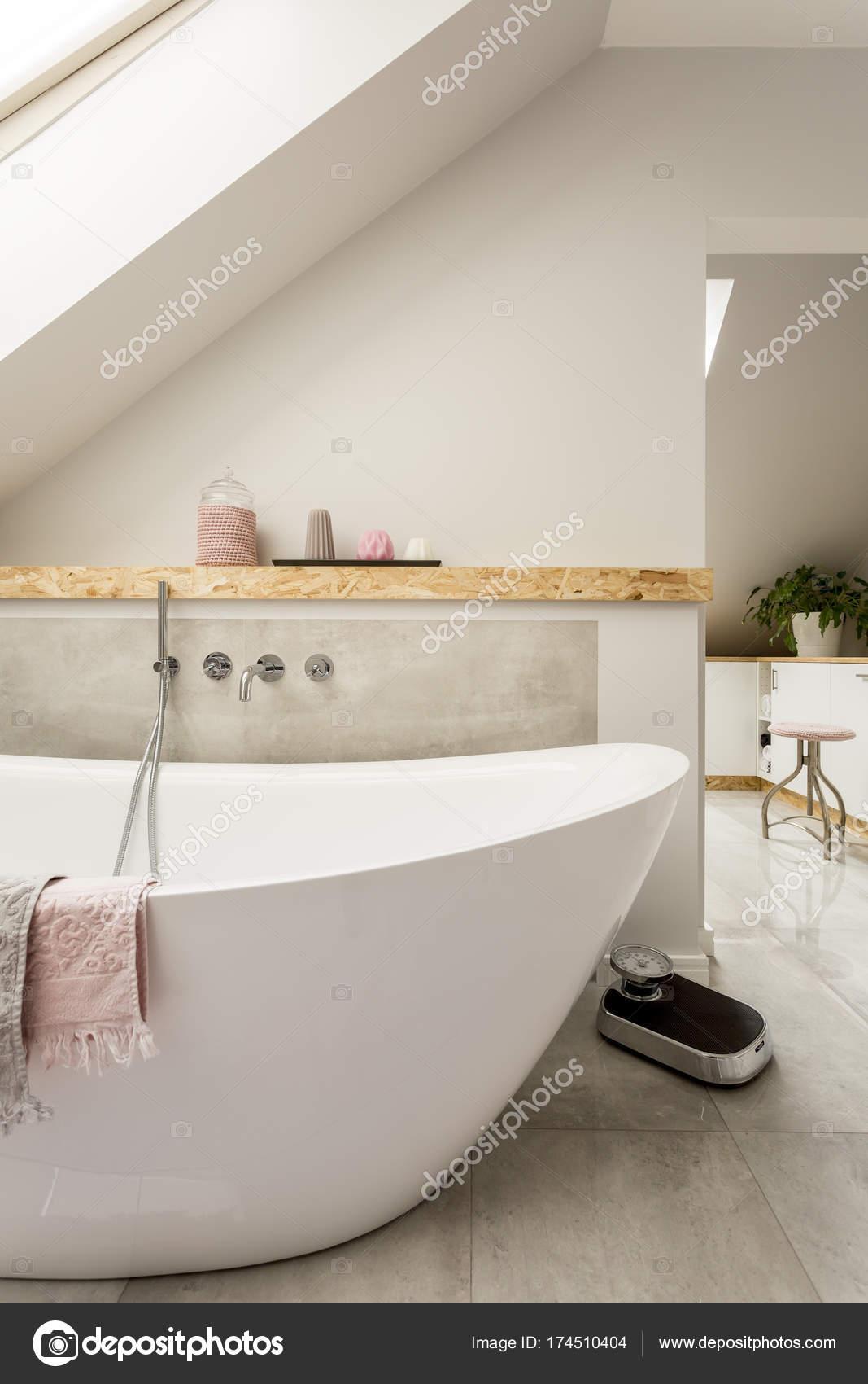 Monochromatyczny łazienka Na Poddaszu Zdjęcie Stockowe