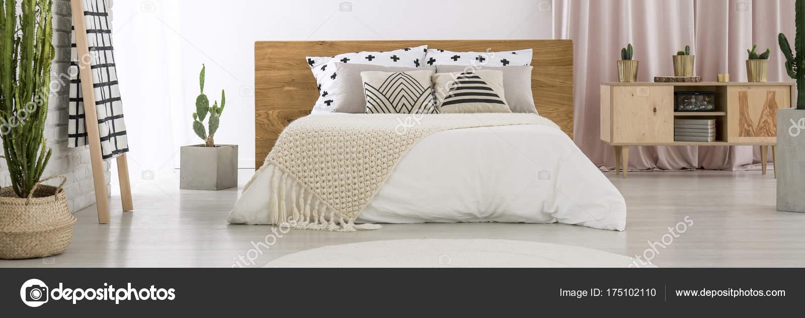 Geräumiges Schlafzimmer mit Kakteen — Stockfoto © photographee.eu ...