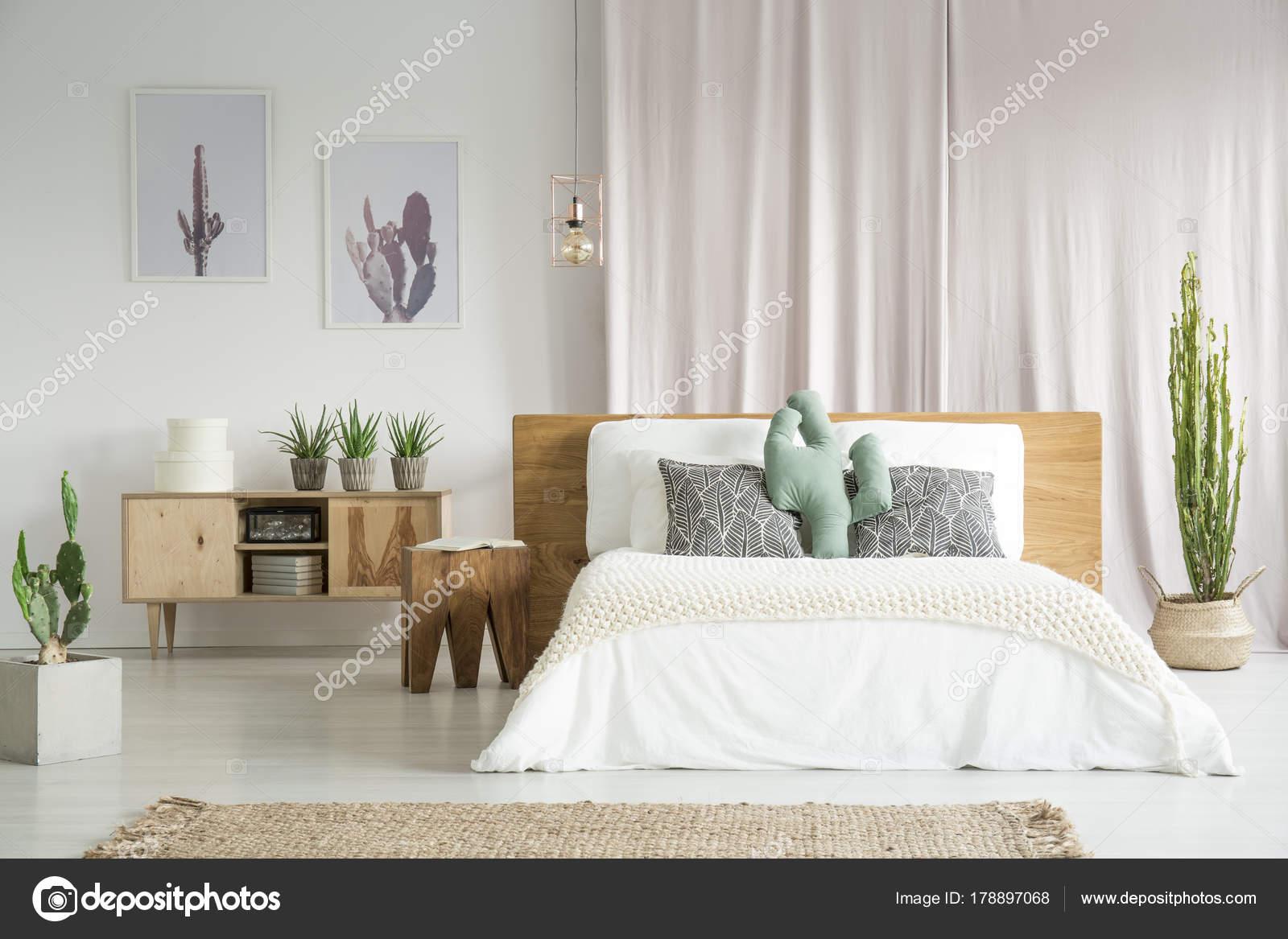 Kakteen im geräumigen Schlafzimmer — Stockfoto © photographee.eu ...