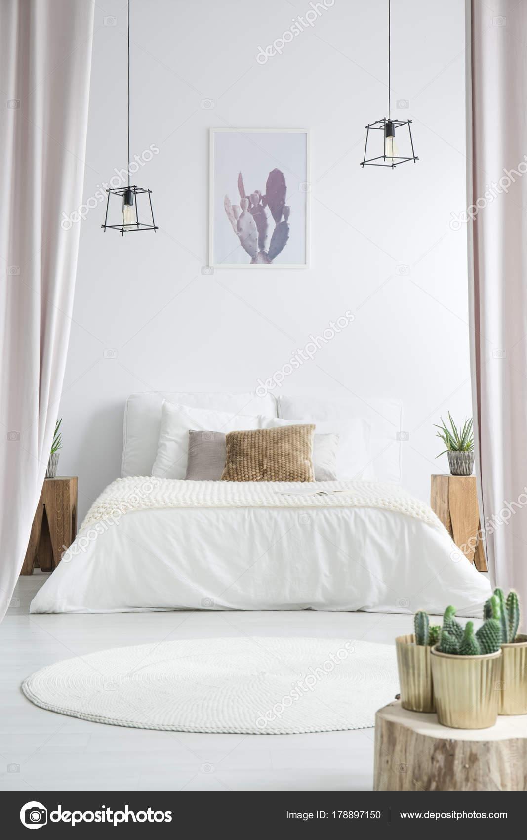 Kaktus in weiße Schlafzimmer — Stockfoto © photographee.eu #178897150
