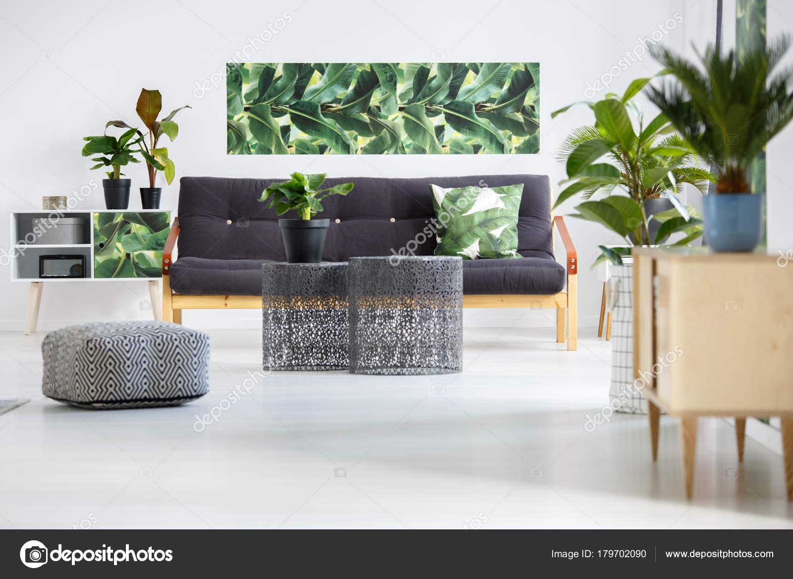Planten in groene woonkamer — Stockfoto © photographee.eu #179702090