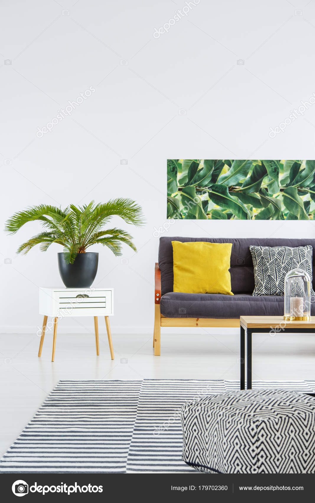 Plant in lichte woonkamer — Stockfoto © photographee.eu #179702360