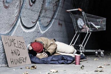 Dirty tramp lying on blanket