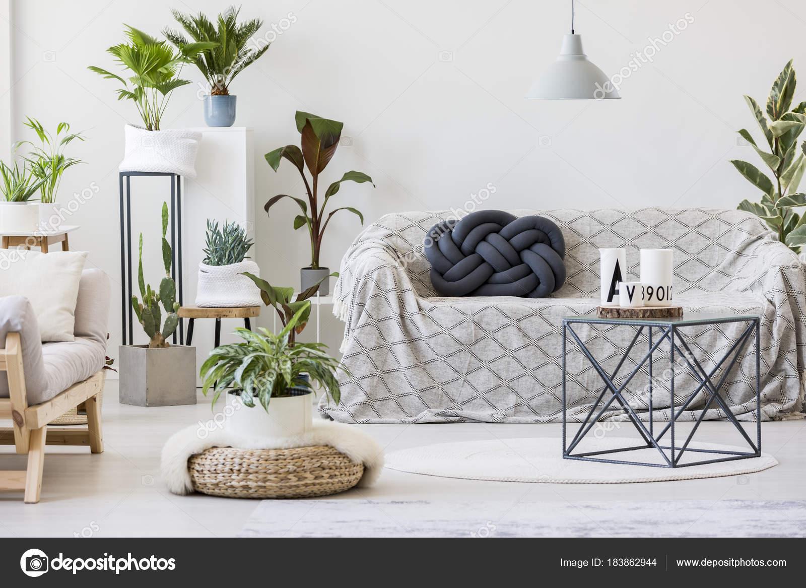 Natuurlijke woonkamer interieur met planten — Stockfoto ...
