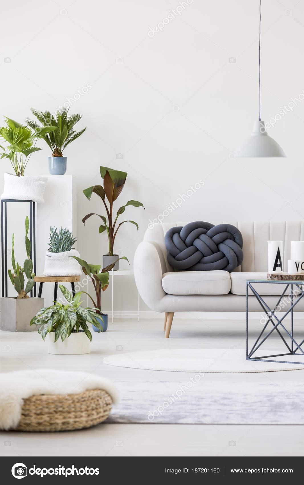 Pflanzen fur wohnzimmer