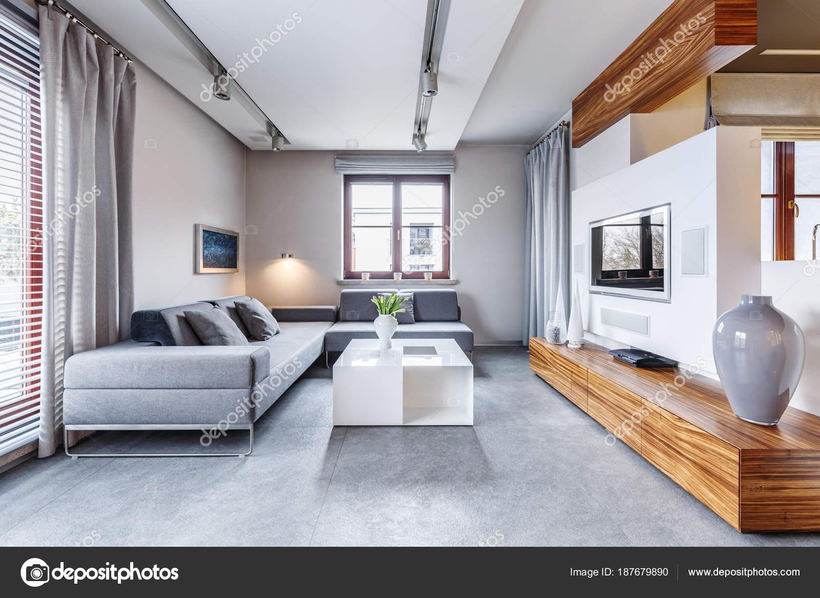 Salon moderne gris — Photographie photographee.eu © #187679890