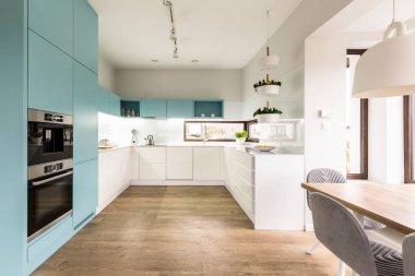 Blue and white kitchen interior