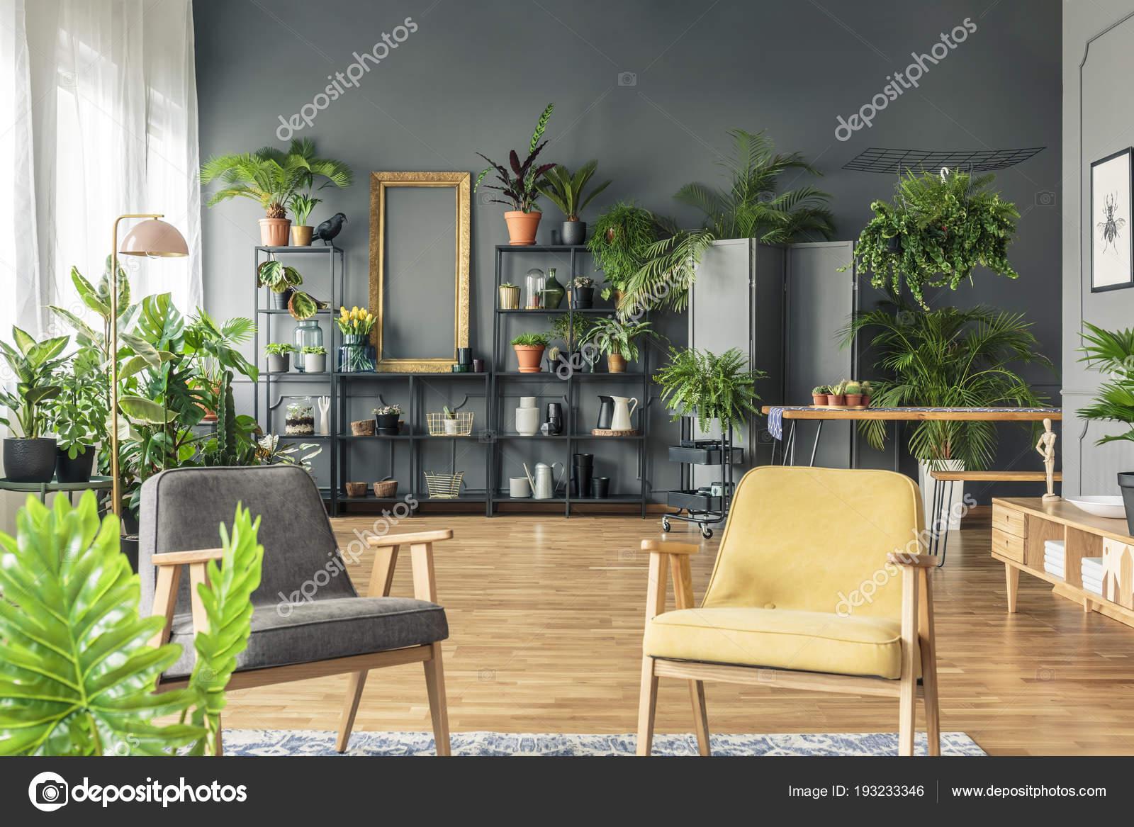 Grau Und Gelb Sessel Im Wohnzimmer Interieur Mit Pflanzen Auf Metallständer  Gegen Schwarze Wand U2014 Foto Von Photographee.eu