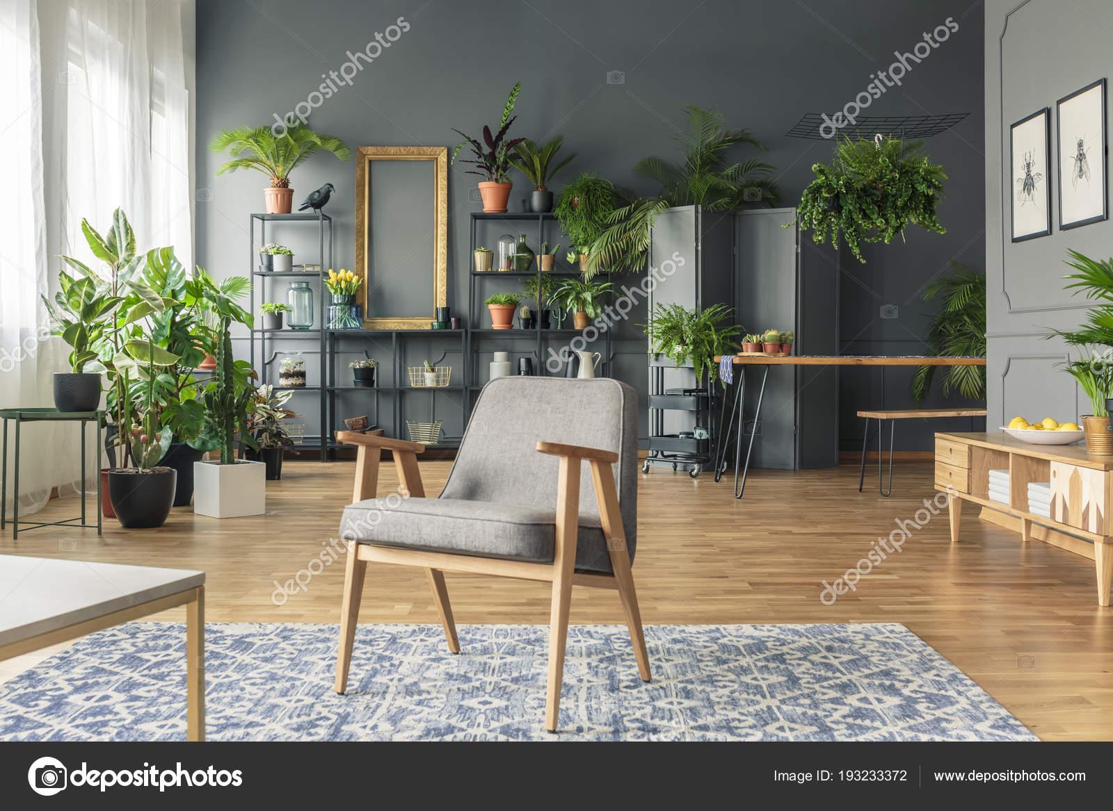 Donkere Vintage Woonkamer : Vintage grijze fauteuil het midden van een tropische woonkamer