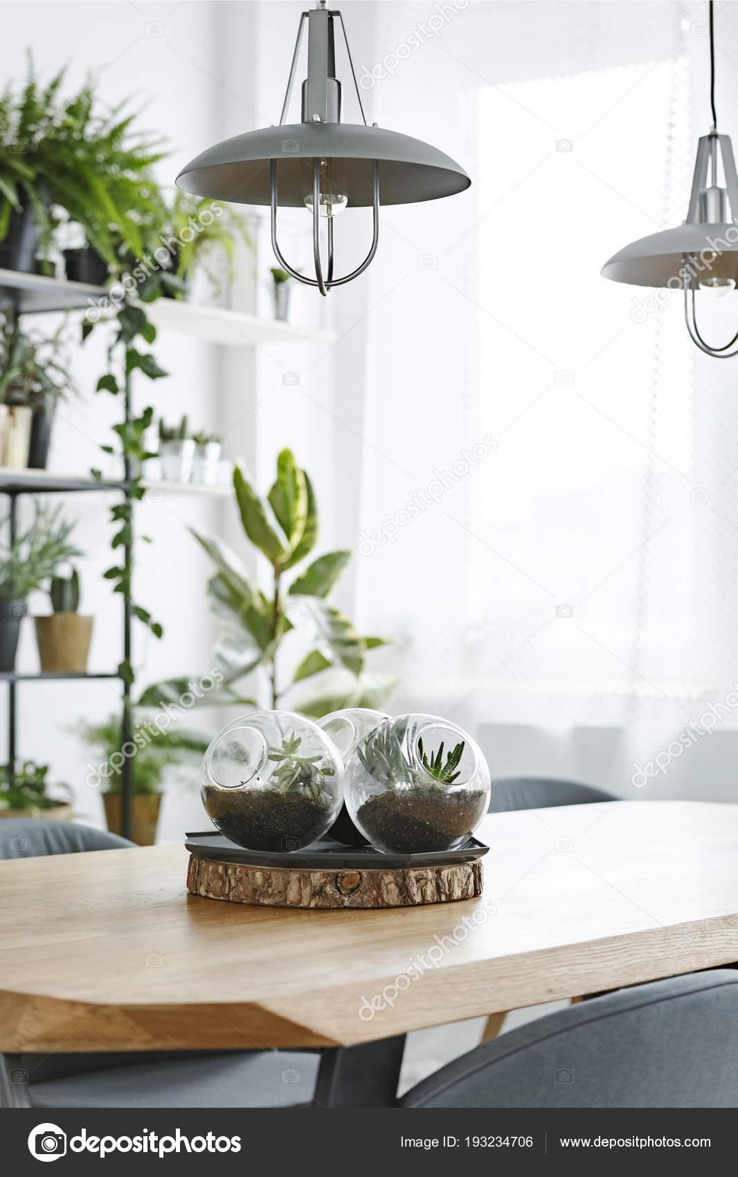 Lámparas Mesa Madera Con Plantas Bolas Plástico Luminoso ...