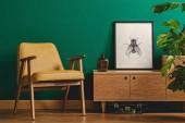 Hmyzí plakát a žluté křeslo