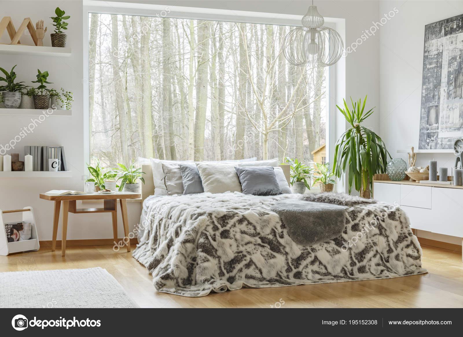 bont op bed tussen planten in natuurlijke slaapkamer interieur met houten tafel en venster foto van photographeeeu